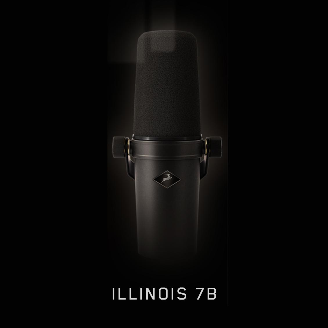 Illinois 7B